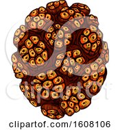 Clipart Of A Sketched Pandan Fruit Royalty Free Vector Illustration