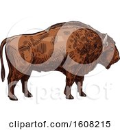 Clipart Of A Sketched Bison Buffalo Royalty Free Vector Illustration by Vector Tradition SM