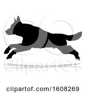 Silhouetted German Shepherd Dog With A Reflection Or Shadow On A White Background