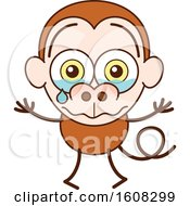 Clipart Of A Cartoon Crying Monkey Royalty Free Vector Illustration