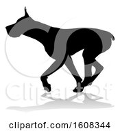 Silhouetted Great Dane Dog With A Reflection Or Shadow On A White Background