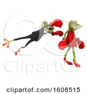 3d Green Frog Couple Wearing Boxing Gloves And Fighting On A White Background