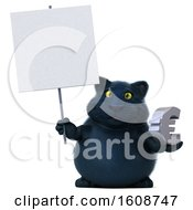 3d Black Kitty Cat Holding A Euro On A White Background