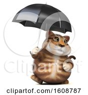 September 18th, 2018: Clipart Of A 3d Tabby Kitty Cat Holding An Umbrella On A White Background Royalty Free Illustration by Julos