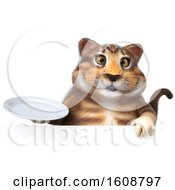 September 18th, 2018: Clipart Of A 3d Tabby Kitty Cat Holding A Plate On A White Background Royalty Free Illustration by Julos