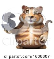 Poster, Art Print Of 3d Tabby Kitty Cat Holding A Dollar Sign On A White Background