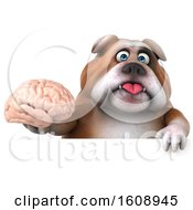 Clipart Of A 3d Bulldog Holding A Brain On A White Background Royalty Free Illustration by Julos