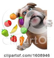 Clipart Of A 3d Bulldog Holding Produce On A White Background Royalty Free Illustration by Julos