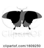 Poster, Art Print Of Silhouetted Butterfly With A Reflection Or Shadow On A White Background