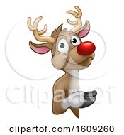 Red Nosed Christmas Reindeer Looking Around A Sign