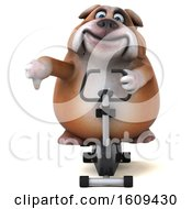 Clipart Of A 3d Bulldog Exercising On A Spin Bike On A White Background Royalty Free Illustration by Julos