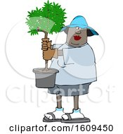 Clipart Of A Cartoon Black Woman Carrying A Small Potted Tree Royalty Free Vector Illustration