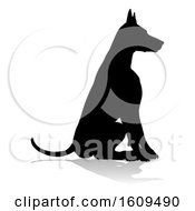 Dog Silhouette Pet Animal With A Reflection Or Shadow On A White Background