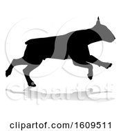 Clipart Of A Silhouetted Bull Terrier Dog With A Reflection Or Shadow On A White Background Royalty Free Vector Illustration