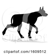 Clipart Of A Silhouetted Doberman Dog With A Reflection Or Shadow On A White Background Royalty Free Vector Illustration