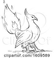 Poster, Art Print Of Sketched Phoenix Bird With Its Tail In Flames In Black And White
