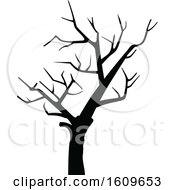 Halloween Bare Tree Black And White Silhouette