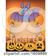 Clipart Of A Halloween Vampire Bat Flying With A Scroll Over Jackolanterns Royalty Free Vector Illustration