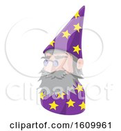 Wizard Avatar People Icon