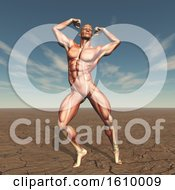 3D Male Body Buildern With Muscle Map In Barren Landscape
