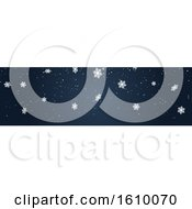 Blue Christmas Or Winter Website Banner