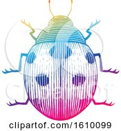 Poster, Art Print Of Sketched Colorful Ladybug
