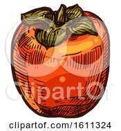 Clipart Of A Sketched Persimmon Fruit Royalty Free Vector Illustration