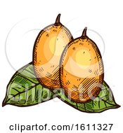 Clipart Of A Sketched Gandaria Tropical Exotic Fruit Royalty Free Vector Illustration