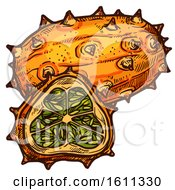 Clipart Of A Sketched Kiwano Tropical Exotic Fruit Royalty Free Vector Illustration