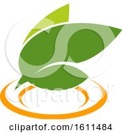 Clipart Of A Vegetarian Food Design With Leaves And A Plate Royalty Free Vector Illustration