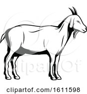 Clipart Of A Black And White Goat Royalty Free Vector Illustration by Vector Tradition SM
