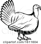 Clipart Of A Black And White Turkey Bird Royalty Free Vector Illustration by Vector Tradition SM