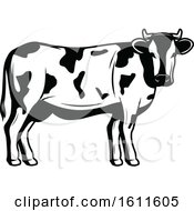 Clipart Of A Black And White Cow Royalty Free Vector Illustration