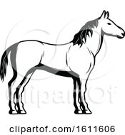 Clipart Of A Black And White Horse Royalty Free Vector Illustration by Vector Tradition SM