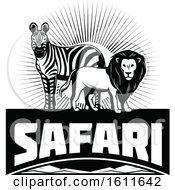 Black And White Zebra And Male Lion Over Safari Text