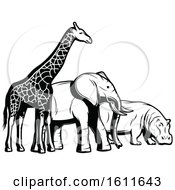 Poster, Art Print Of Black And White Giraffe Elephant And Hippo