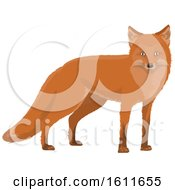 Clipart Of A Fox Royalty Free Vector Illustration by Vector Tradition SM