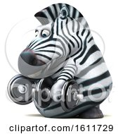 3d Zebra Working Out With Dumbbells On A White Background