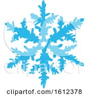 Blue Winter Snowflake