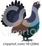Poster, Art Print Of Grouse Game Bird