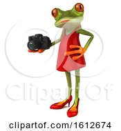3d Green Female Frog Holding A Camera On A White Background