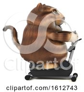 Clipart Of A 3d Tabby Kitty Cat Exercising On A Gym Bike On A White Background Royalty Free Illustration