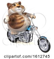 Clipart Of A 3d Tabby Kitty Cat Biker Riding A Chopper Motorcycle On A White Background Royalty Free Illustration
