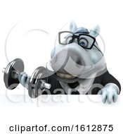 Clipart Of A 3d Chubby White Business Horse Holding A Dumbbell On A White Background Royalty Free Illustration