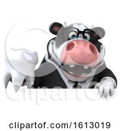 3d Business Holstein Cow Holding A Tooth On A White Background