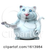 November 10th, 2018: Clipart Of A 3d White Kitty Cat On A White Background Royalty Free Illustration by Julos