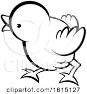 Poster, Art Print Of Black And White Cute Curious Chick