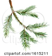 Clipart Of A Spruce Tree Branch Royalty Free Vector Illustration