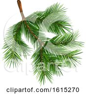 Clipart Of A Fir Tree Branch Royalty Free Vector Illustration