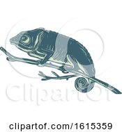 Clipart Of A Scratchboard Style Chameleon On A Branch Royalty Free Vector Illustration